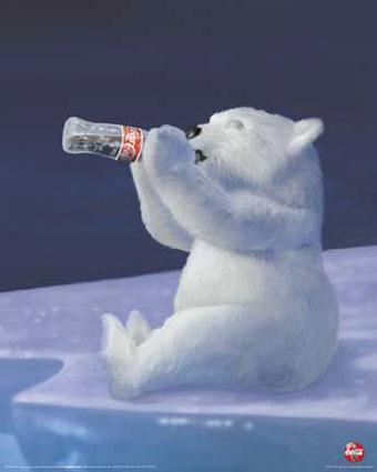 ijsbeer coca