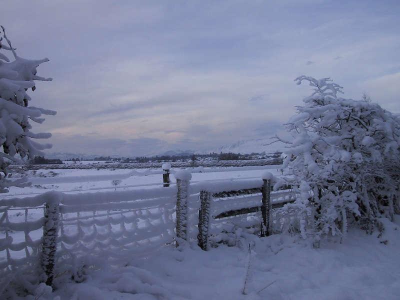 winter- snow (hey ho)