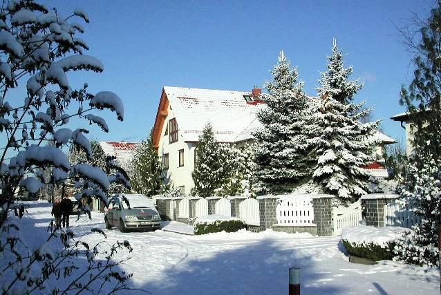 white-christmas-1775
